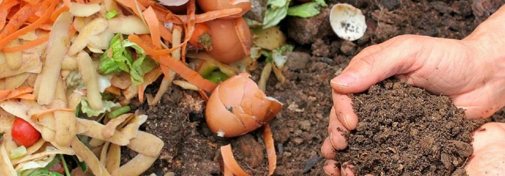 Food Scrap Compost