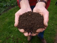 Person holding compost in hands